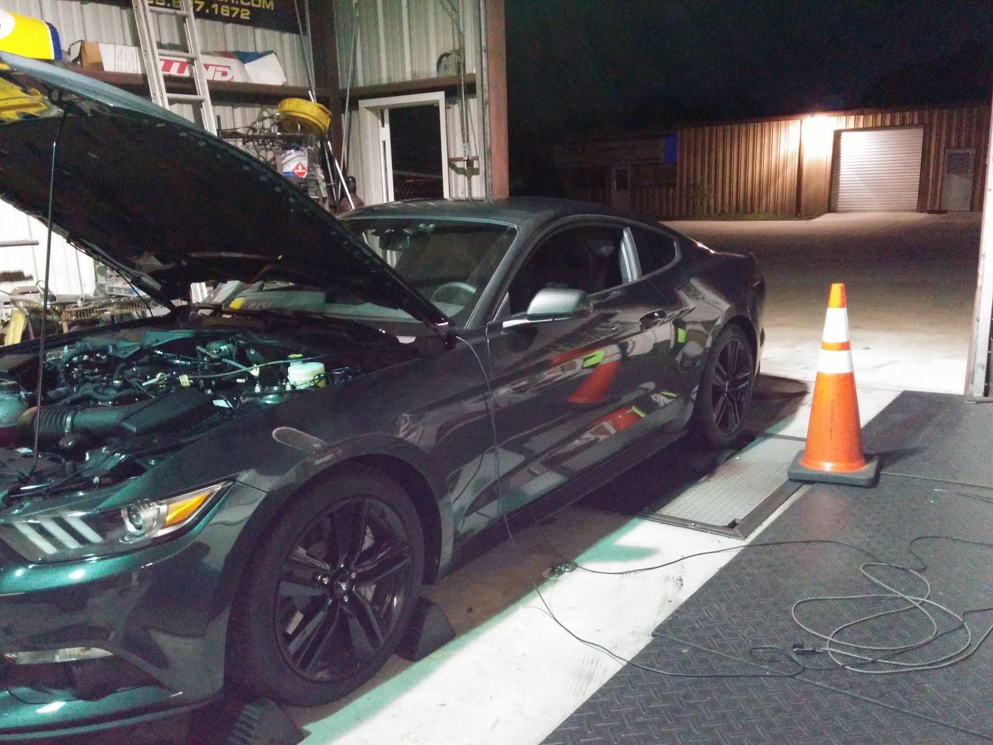 Ecoboost Mustang